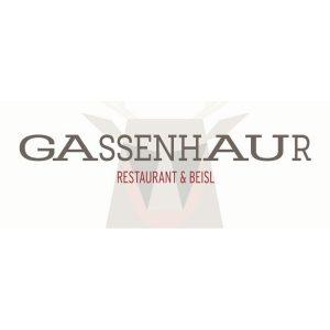 Logo Gassenhaur - Partner PANIK CITY